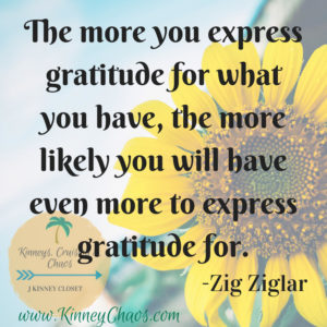 The more you express gratitude for what you have, the more likely you will have even more to express gratitude for. - Zig Ziglar